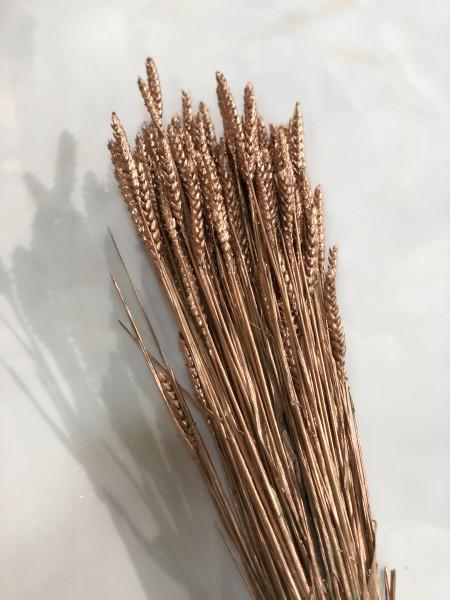Trockenblume Weizen XL Bund Kupfer gefärbt